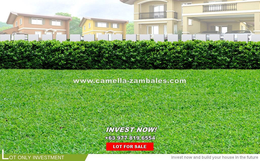 Lot House for Sale in Zambales